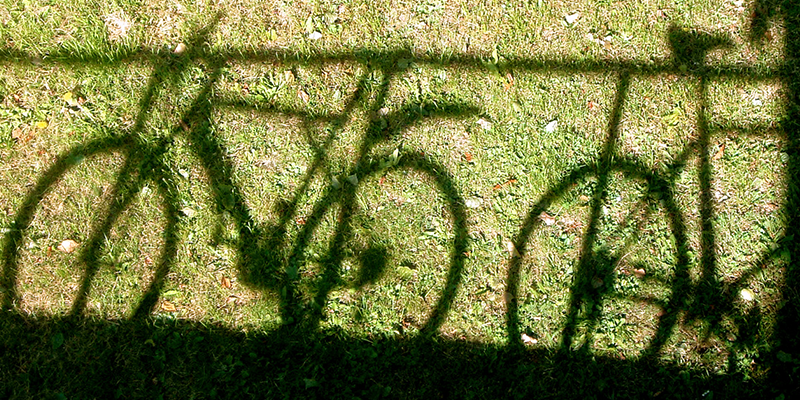 shadows of bikes